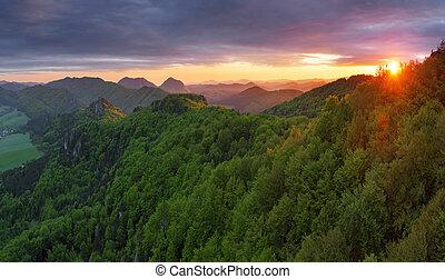 montanha, floresta verde, pôr do sol, sol