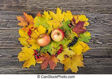 montanha, luminoso, cinza, maçã, folhas