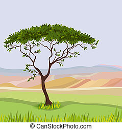 montanha, natural, paisagem, idealista