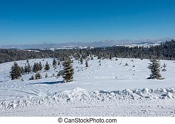 montanha nevada, estrada rural