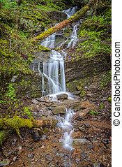 montanha, pequeno, cachoeira, esfumaçado, primavera