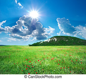 montanha, prado verde