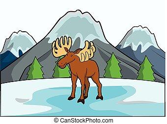 montanha, veado, cena, gelo