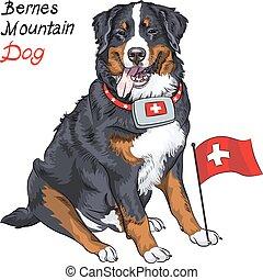 montanha, vetorial, raça, cão, bernese, sorrindo