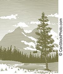 montanha, wooduct, lago