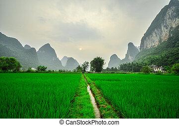 montanha, yangshuo, guilin, rio li, paisagem