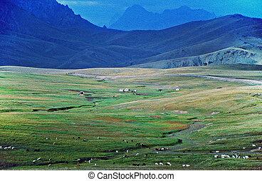 montanhas, óleo,  -,  pamir, pintura,  steppe, Asiático, boiada, paisagem