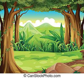 montanhas altas, floresta verde, através