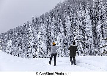 montanhas, andar, turistas, rastro, nevado