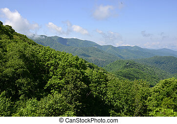 montanhas appalachian, carolina norte, eua