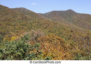 montanhas appalachian, outono