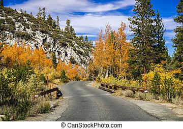 montanhas, aspen, day;, coloridos, oriental, forro, ensolarado, cima, árvores, outono, califórnia, sierra, estrada estreita, pavimentado