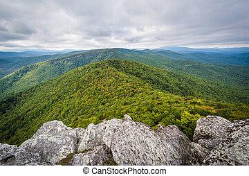 montanhas azuis, carolina., cume, pisgah, floresta, borda,...