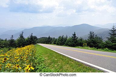 montanhas azuis, parkway, cume