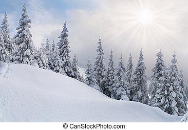 montanhas, carpathian, snowstorm
