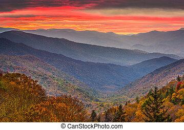 montanhas, eua, tennessee, esfumaçado, outono, parque,...