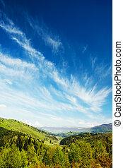 montanhas, floresta verde, paisagem