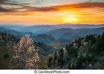 montanhas, grande, norte, cherokee, esfumaçado, scen,...