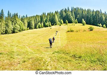 montanhas, grupo, hiking, pessoas