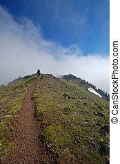 montanhas, hiking homem, rastro