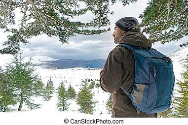 montanhas, homem, viajante, nevado