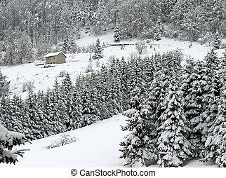 montanhas, isolado, neve, cabana, lote, branca