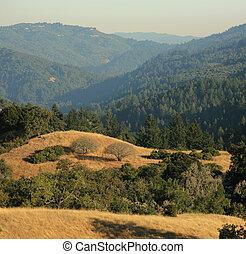 montanhas, monte, bello, central, espaço, panorâmico, cruz, califórnia, santa, abertos, vista