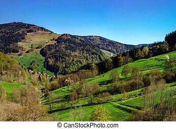 montanhas, primavera, ensolarado, schwarzwald, vista, dia