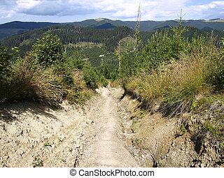 montanhas, rachado, estrada, carpatian