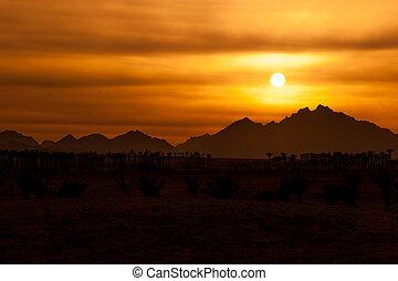 montanhas, rochoso, -, sahara, pôr do sol, deserto