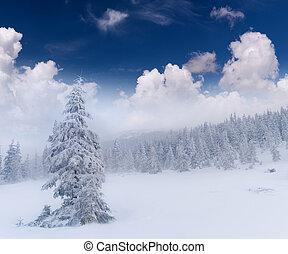 montanhas, snowstorm