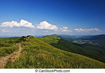 montanhas, verde