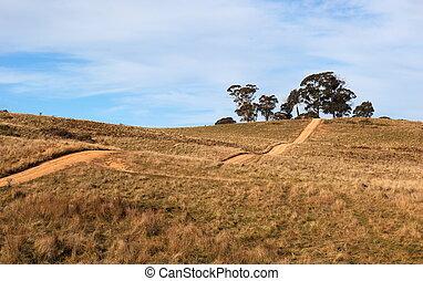 montanhoso, país, road., tablelands, perto, oberon., novo,...