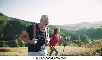 montant, sacs dos, randonée couple, personne agee, nature., touriste