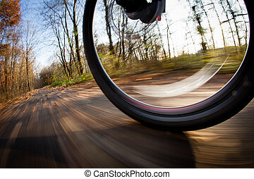 montar a caballo de la bicicleta, en, un, parque de la ciudad, en, un, encantador, autumn/fall, día