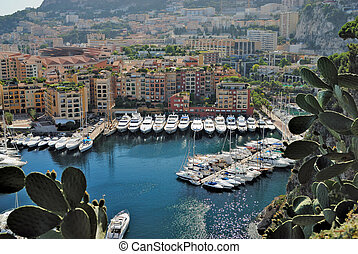 monte, appartements, yachts, fontvielle, carlo, port