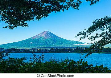 monte fuji, formulou, árvores, manhã, kawaguchiko, lago