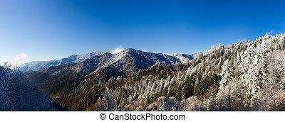 monte, smokies, nieve, leconte
