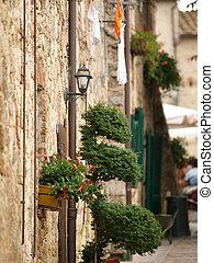 Monteriggioni, medieval village in Tuscany