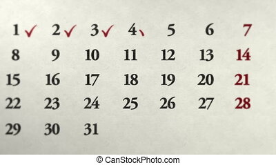Monthly Calendar with checks