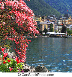 Montreux and Lake Geneva, Switzerland. - A beautiful spring...