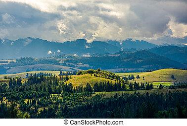 montuoso, campo, en, un, día nublado