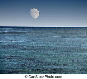 monture, océan pacifique, lune, sur, californie