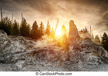 Siliceous spire at sunset time seen at Monument Geyser Basin. Yellowstone National Park, Wyoming - USA