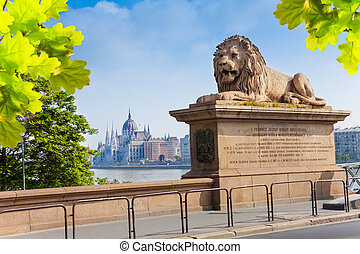 Monument of the lion on Chain bridge in Budapest