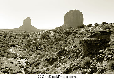Monument Valley Black and White