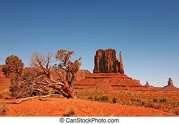monumento, navajo, vale, paisagem, nação