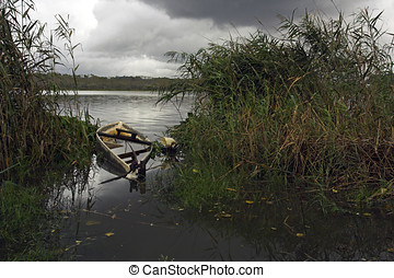 Moody landscape - Semi sunk little boat in a river (Pateira...