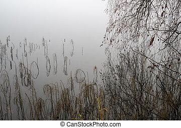 Moody misty autumn background with wild grass