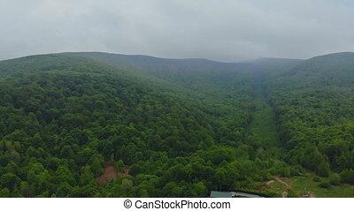 mooi, berg, luchtopnames, op, vliegen, forest., panorama., overzicht., landscape